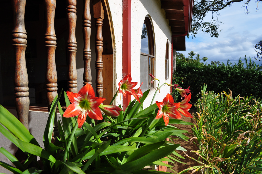 LaCatalina Hotel Costa Rica Boutique Hotel Heredia